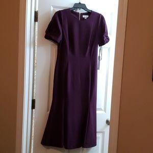 Calvin Klein Dress Aub color Size 8